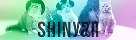 SHINyan OFFICIAL WEBSITE