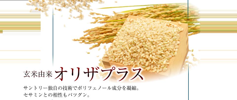 玄米由来オリザプラス サントリー独自の技術でポリフェノール成分を凝縮。セサミンとの相性もバツグン。