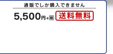 通販でしか購入できません 5,500円+税 送料無料