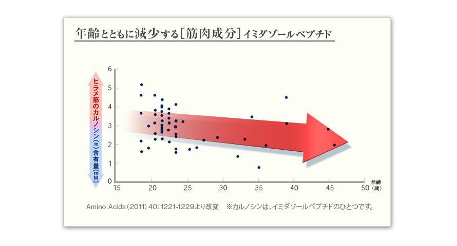 年齢とともに減少する[筋肉成分]イミダゾールペプチド ヒラメ筋のカルノシン※含有量(mM) Amino Acids(2011)40:1221-1229より改変 ※カルノシンは、イミダゾールペプチドのひとつです。