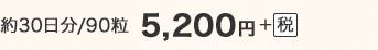 約30日分/90粒 5,200円+税