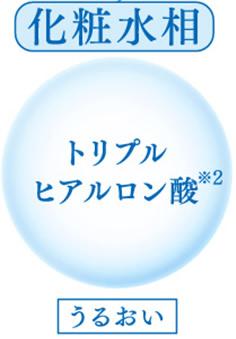 化粧水相 トリプルヒアルロン酸※2 うるおい
