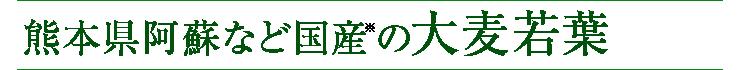 熊本県阿蘇など国産※の大麦若葉