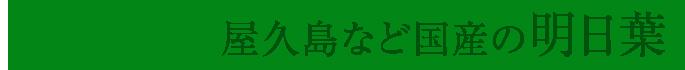 屋久島など国産の明日葉