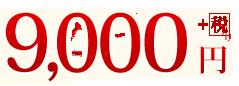 9,000円+税