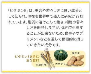 「ビタミンE」は、美容や若々しさに良い成分として知られ、現在も世界中で盛んに研究が行われています。脂質に溶けこんで働き、細胞の若々しさを維持しますが、体内で生成することが出来ないため、食事やサプリメントなどを通して積極的に摂っていきたい成分です。ビタミンEを含む主な食材:小麦胚芽、カボチャ、落花生