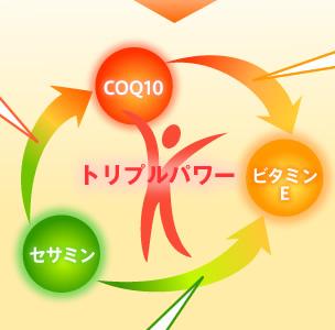 トリプルパワー:CoQ10・セサミン・ビタミンE