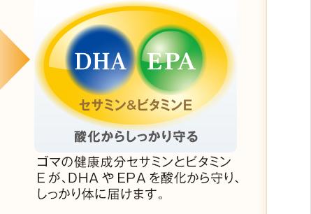 酸化からしっかり守る ゴマの健康成分セサミンとビタミンEが、DHAやEPAを酸化から守り、しっかり体に届けます。