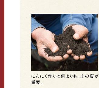 にんにく作りは何よりも、土の質が重要。