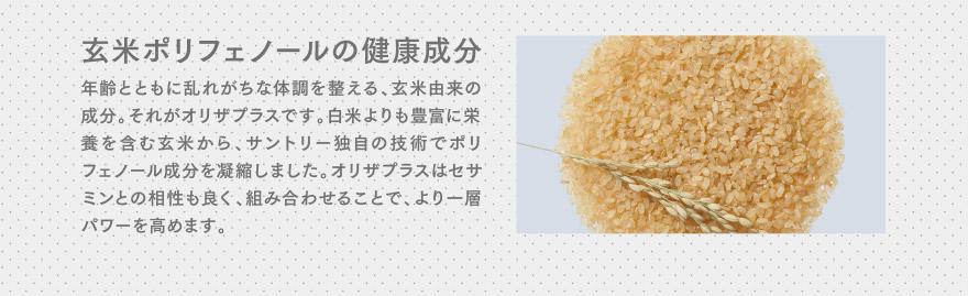 玄米ポリフェノールの健康成分 年齢とともに乱れがちな体調を整える、玄米由来の成分。それがオリザプラスです。白米よりも豊富に栄養を含む玄米から、サントリー独自の技術でポリフェノール成分を凝縮しました。オリザプラスはセサミンとの相性も良く、組み合わせることで、より一層パワーを高めます。