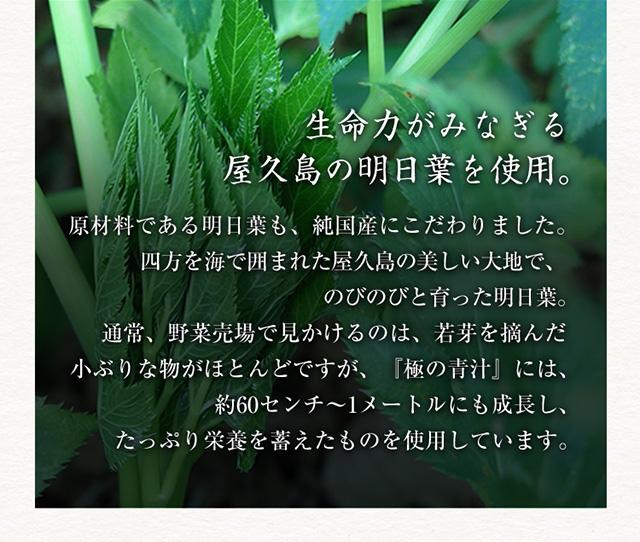 生命力がみなぎる屋久島の明日葉を使用。 原材料である明日葉も、純国産にこだわりました。四方を海で囲まれた屋久島の美しい大地で、のびのびと育った明日葉。通常、野菜売場で見かけるのは、若芽を摘んだ小ぶりな物がほとんどですが、『極の青汁』には、約60センチ~1メートルにも成長し、たっぷり栄養を蓄えたものを使用しています。