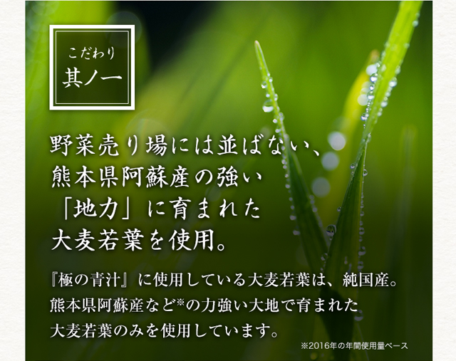 こだわり其ノ一 野菜売り場には並ばない、熊本県阿蘇産の強い「地力」に育まれた大麦若葉を使用。 『極の青汁』に使用している大麦若葉は、純国産。熊本県阿蘇産など※の力強い大地で育まれた大麦若葉のみを使用しています。 ※2016年の年間使用量ベース